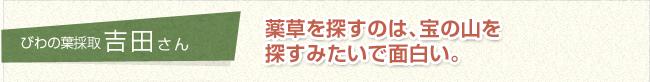 びわの葉採取 吉田さん 薬草を探すのは、宝の山を探すみたいで面白い。
